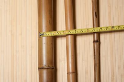 Выбор стволов бамбука
