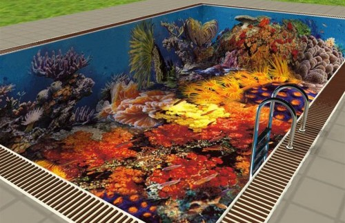 Кусочек дна Красного моря в бассейне