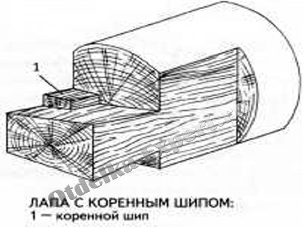 Схема устройства коренного шипа