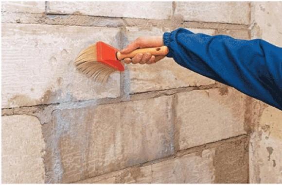 Грунтовка с антигрибковым эффектом защитит конструкции от плесени