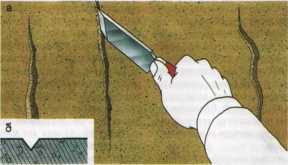 В сечении трещины должны приобрести треугольную форму