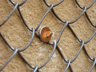 Сетка-рабица на фасаде