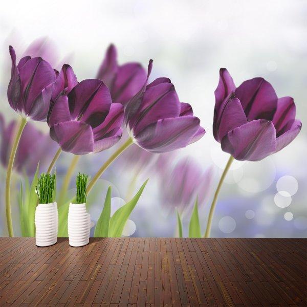 Фотообои с фиолетовыми тюльпанами