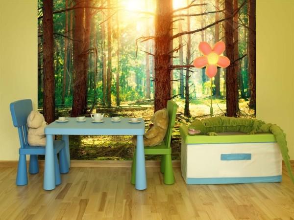 Фотообои с видом леса в детской комнате
