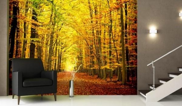На фото, фотообои с тематикой красочного осеннего леса