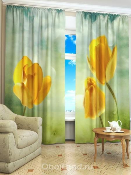 Небольшой, но яркий акцент на занавесях с тюльпанами