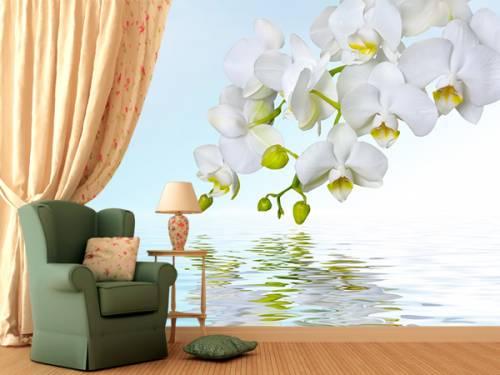 3д фотообои с веткой орхидеи над водой в зоне отдыха
