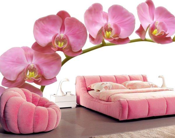 Фотообои 3д с розовыми орхидеями в интерьере спальни