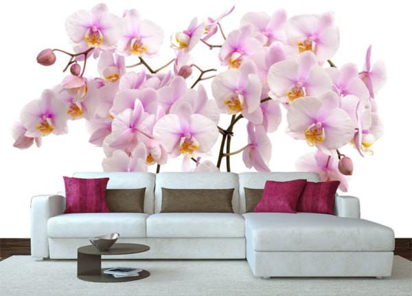 На фото, нежные орхидеи в интерьере гостиной