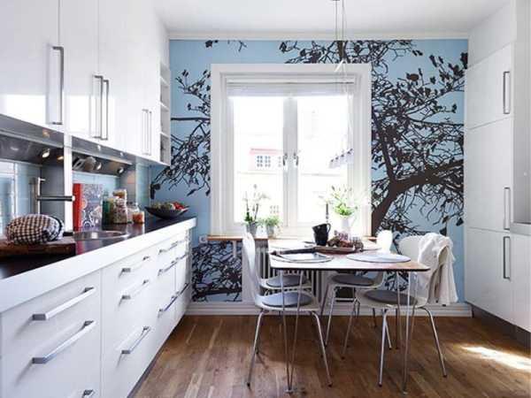 Одиночное дерево возле окна в интерьере кухни
