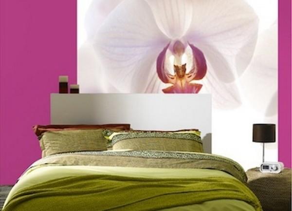 Сочетание фотообоев с белой орхидеей и однотонных малиновых обоев