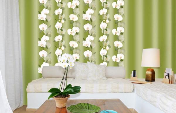 Цветки орхидеи на стенах дополнены живой орхидеей