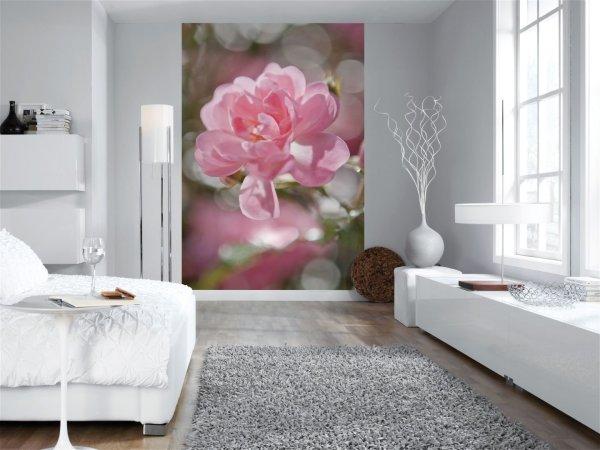 Фотообои с изображением одиночного цветка, в интерьере гостиной