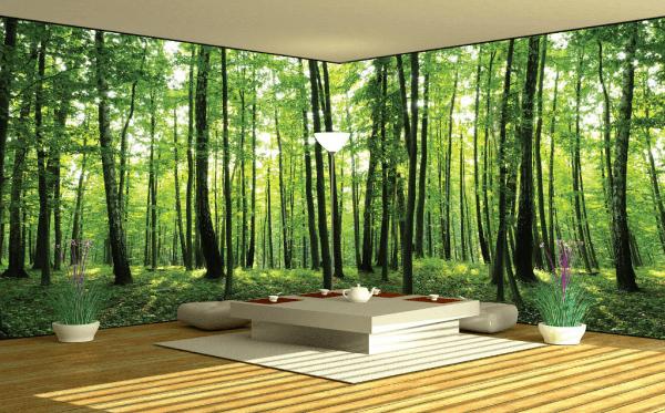 Панорамные фотообои с трёхмерным изображением на несколько стен
