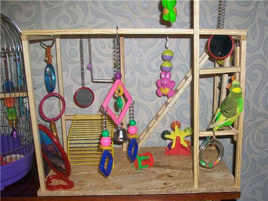 Игровой стенд для попугайчика