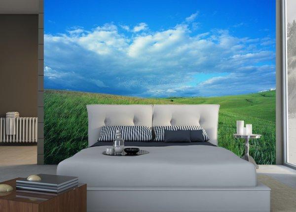 Изображение голубого неба и зелёного поля, создают четкое горизонтальное разделение интерьера в спальне и визуально делают комнату шире