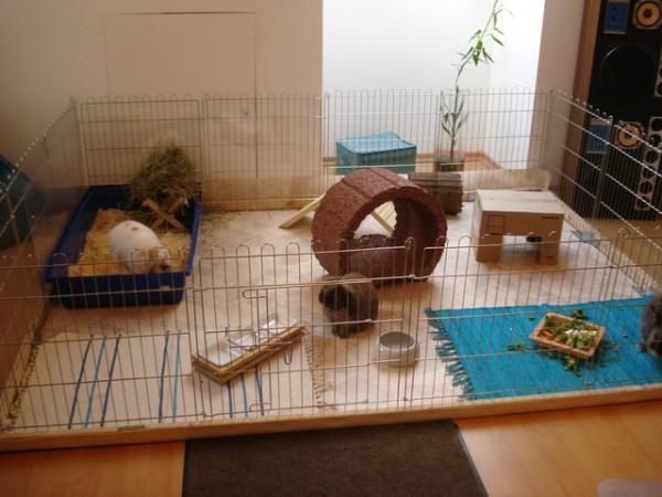 Вольер для содержания кролика