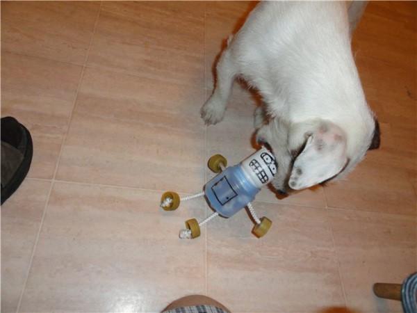 Забавный человечек для собак