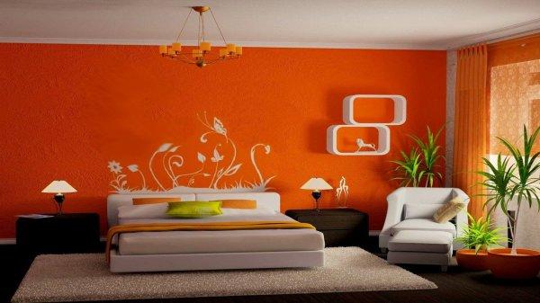Чем в квартире покрасить стены