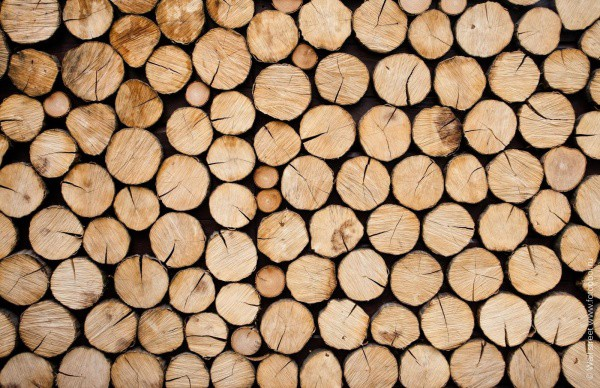 Фотообои с имитацией дровяной поленницы