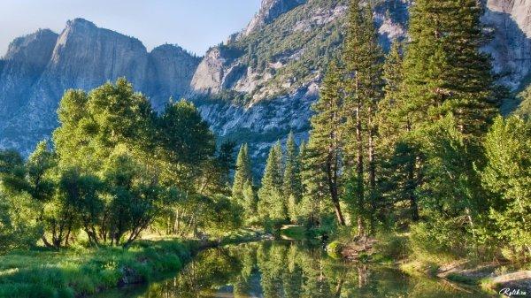 Лес на фоне высоких заснеженных гор