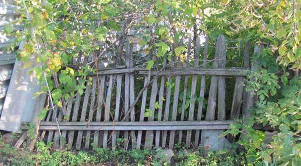 Забор, который краской уже не спасёшь