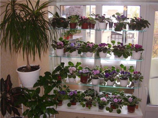 Полочка для цветов на окнах