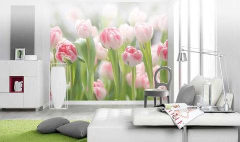 Цветы для комнаты девочки