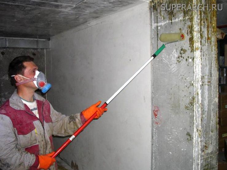 Шаг второй: обработать стену от грибка