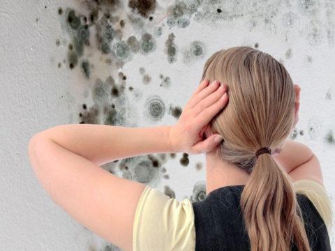 Нестойкие к влаге покрытия быстро разрушаются грибком