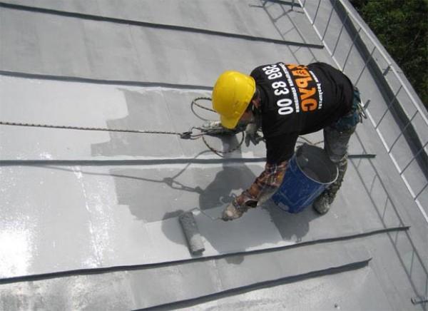 Окраска оцинкованной крыши должна выполняться со страховкой