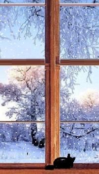 А может вид из окна на заснеженный лес