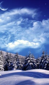 Даже если нет новогодней атрибутики, зимние пейзажи говорят о скором празднике