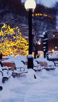 Зимний парк в преддверии нового года